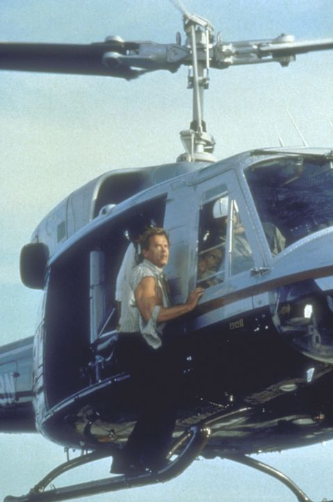 Todesmutig riskiert Harry (Arnold Schwarzenegger) Kopf und Kragen ... - Bildquelle: 20th Century Fox Film Corporation