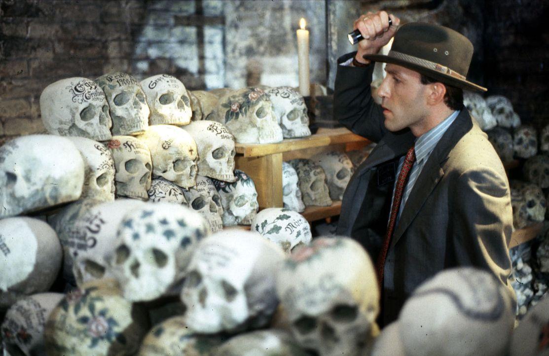 Stockinger (Karl Markovics) ist im Gebeinhaus von Hallstatt, um dort den bemalten Totenschädel von Edmund Assigal zu suchen. Da Assigal lebt, muss d... - Bildquelle: Hermann Huber Sat.1