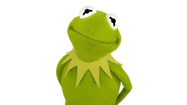 kermit frosch