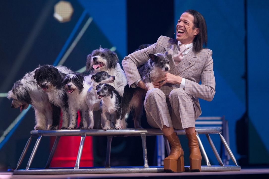 Was ist denn da los? Das Hunderudel hat Jorge González voll im Griff. Hoffentlich klappt die einstudierte Aufführung wie geplant. Können die Hunde m... - Bildquelle: Jens Hartmann SAT.1