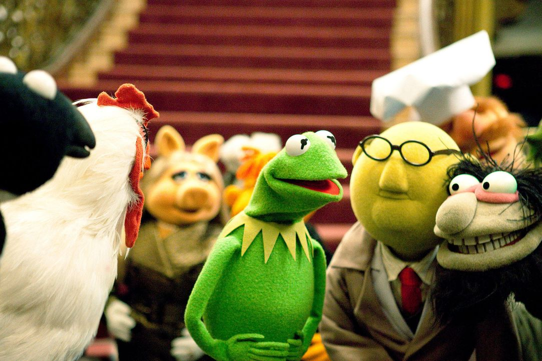 muppets-06-disney-enterprises-incjpg 1900 x 1267 - Bildquelle: Disney Enterprises Inc.