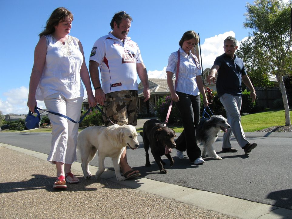 Cesar Millan (r.) macht sich auf den Weg nach Australien, um verzweifelten Hundebesitzern zu helfen und deren Vierbeiner von kleinen und großen Neu... - Bildquelle: 2014 Rive Gauche Television. All rights reserved.