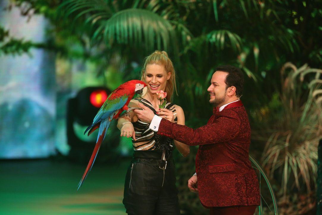 """Michelle Hunziker (l.) ist hin und weg: Alessio Fochesatos (r.) Ara """"Havanna"""" schenkt ihr eine Rose. Erobert er Michelles Herz und sichert somit ein... - Bildquelle: Stefan Hobmaier SAT.1"""