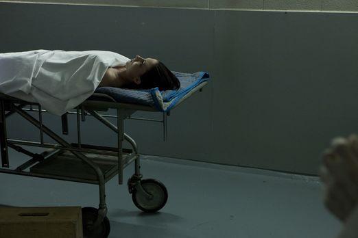 Wer hat die junge Mutter Karyn Slover (Bild) getötet? Nachdem ihre zerstückel...