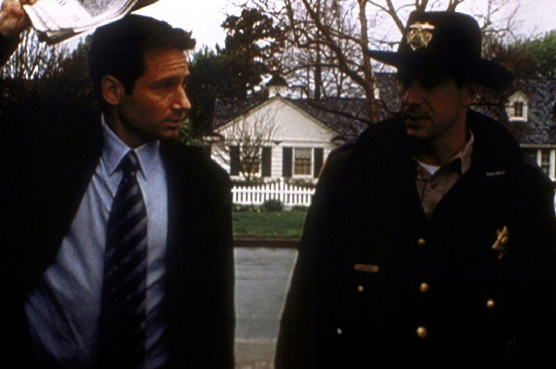 Sheriff Adderly (John Mese, r.) hilft Mulder (David Duchovny, l.) bei der Suche nach einer verschwundenen Frau. - Bildquelle: TM +   2000 Twentieth Century Fox Film Corporation. All Rights Reserved.