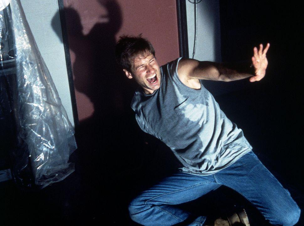 Bei seinen Ermittlungen stößt Mulder (David Duchovny) auf Außerirdische ... - Bildquelle: TM +   2000 Twentieth Century Fox Film Corporation. All Rights Reserved.