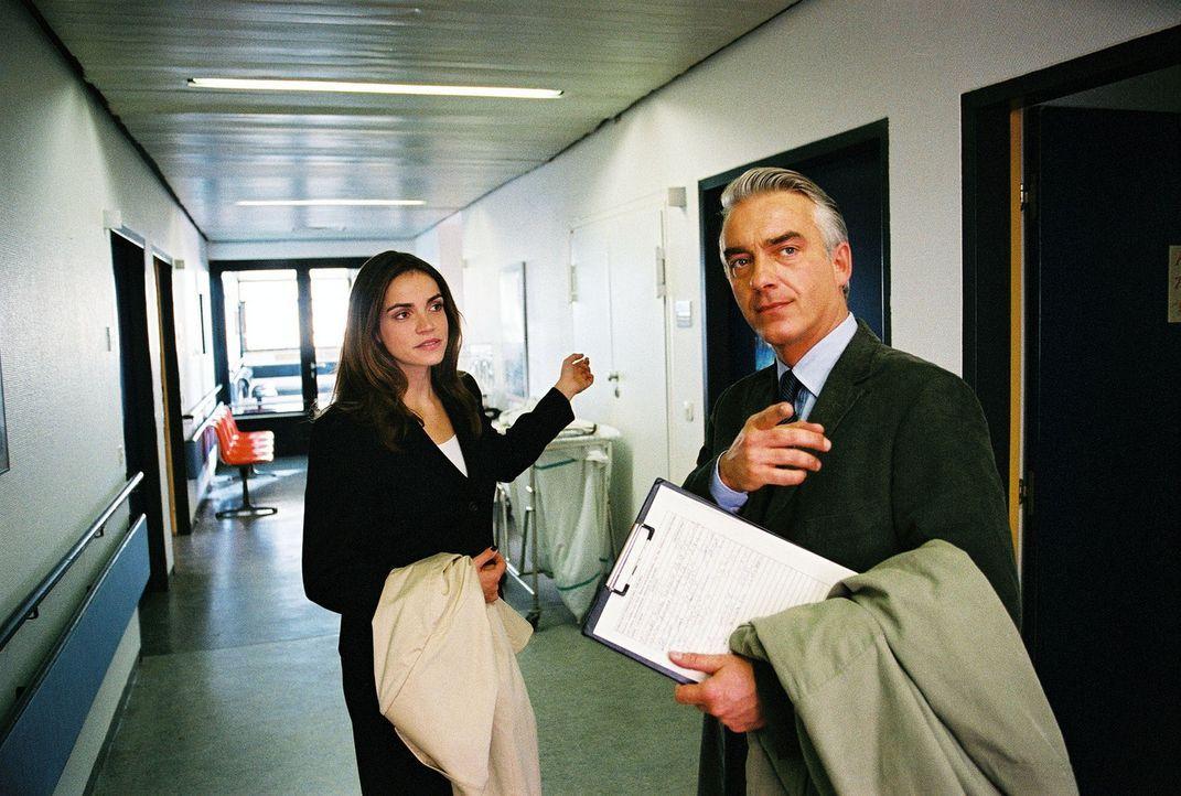 Sandra (Rebecca Immanuel, l.) weiß, wo's lang geht. Felix (Christoph M. Ohrt, r.) auch ... - Bildquelle: Hardy Spitz Sat.1