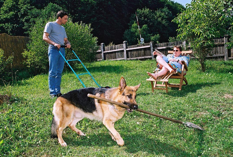 Christian Böck (Heinz Weixelbraun, r.) entspannt sich in Alexanders Garten, während Brandtner (Gedeon Burkhard, l.) und Rex schwer schuften... - Bildquelle: Ali Schafler Sat.1