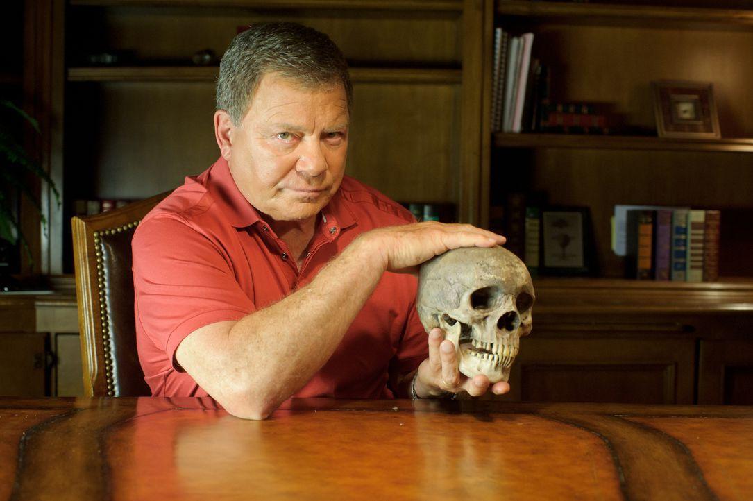 """Science-Fiction-Legende William Shatner geht in """"Einfach überirdisch - mit William Shatner"""" der Wahrheit hinter unglaublichen Geschichten und skurri... - Bildquelle: Cineflix 2010"""
