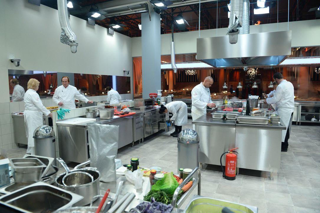 Elf Prominente müssen maximal acht Tage ihre Kochkünste in einer perfekt ausgestatteten Profiküche unter Beweis stellen ... - Bildquelle: Willi Weber SAT.1