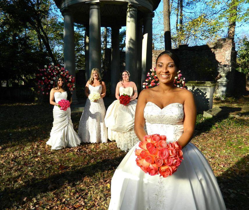 Wird Zorandas (r.) Hochzeit ihre Konkurrentinnen Anumita (l.), Karen (2.v.l.) und Maria (2.v.r.) aus den Socken hauen? - Bildquelle: Richard Vagg DCL