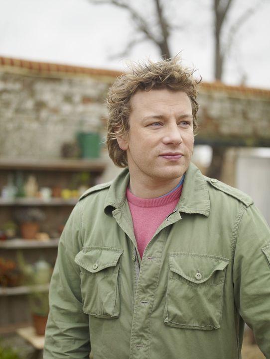 (2. Staffel) - Die Natur hat Einiges zu bieten und Jamie Oliver weiß diese Zutaten perfekt zu nutzen ... - Bildquelle: Fremantle