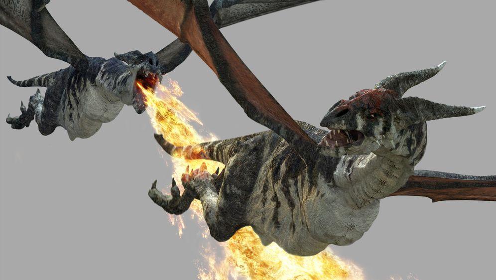 Dragon's World - Unglaubliche Entdeckung im Reich der Drachen