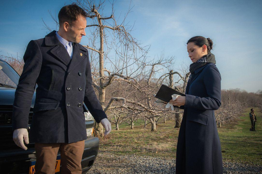 Als ein Mitglied aus Holmes Imker Community unter mysteriösen Umständen ums Leben kommt, schauen sich Holmes (Jonny Lee Miller, l.) und Watson (Lucy... - Bildquelle: CBS Television
