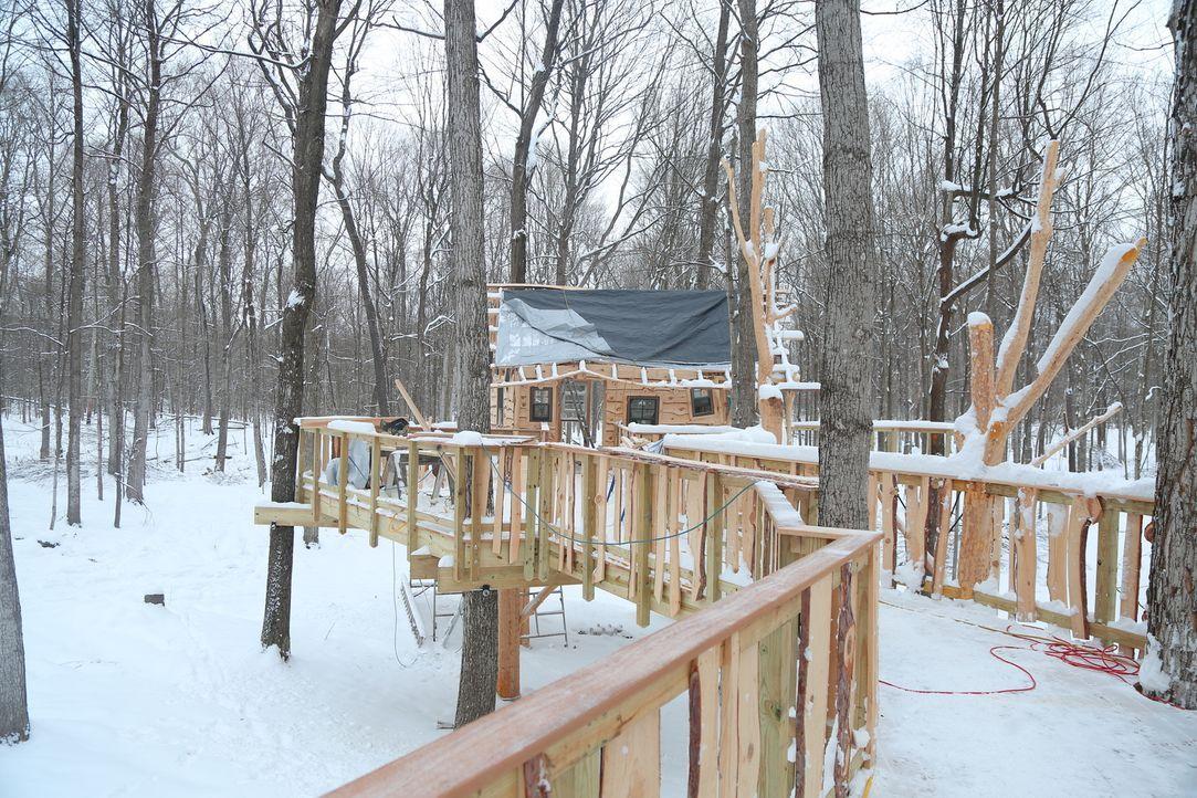 """Im Norden von New York bauen B'fer und seine Treehouse Guys dieses Mal für ganz besondere Kinder: Die behinderten Kids von """"Sunshine Campus"""" sollen... - Bildquelle: 2015, DIY Network/Scripps Networks, LLC. All Rights Reserved."""