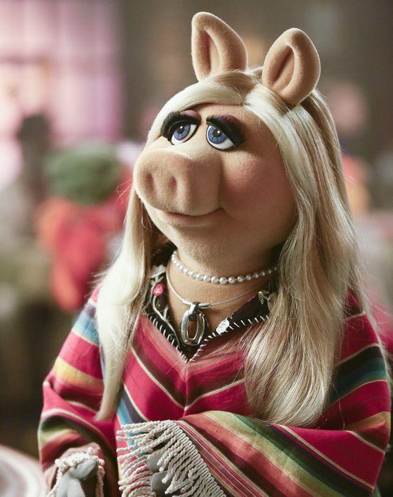 Ist entsetzt, als Marketingguru Pizza plötzlich auftaucht: Miss Piggy ... - Bildquelle: Nicole Wilder ABC Studios