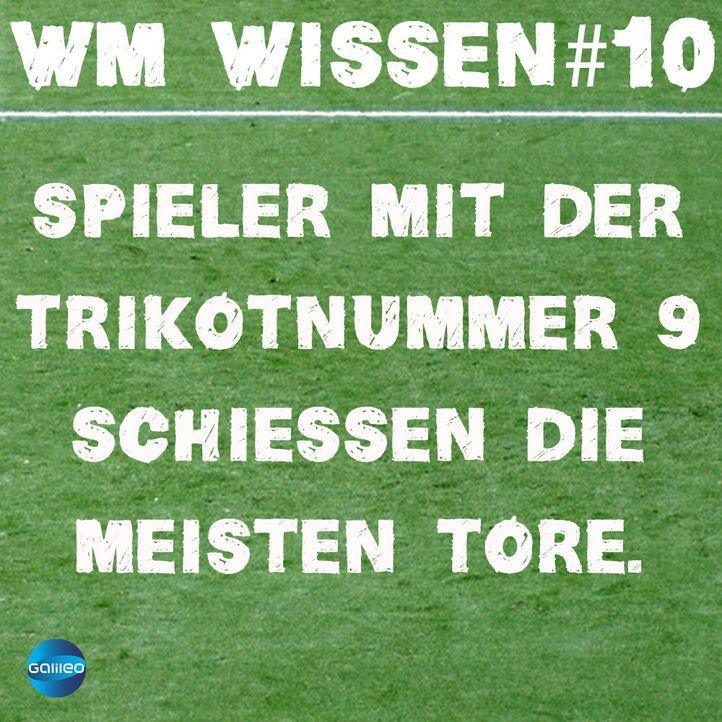 wmwissen10