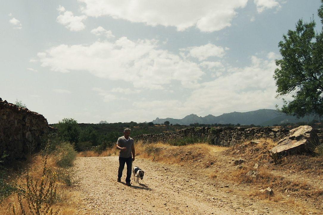 Cesar weiß: Brigadieres neue Familie muss extrem viel Geduld mitbringen, um das Tier behutsam an ein neues Zuhause zu gewöhnen ... - Bildquelle: Belén Ruiz Lanzas 360 Powwow, LLC / Belén Ruiz Lanzas