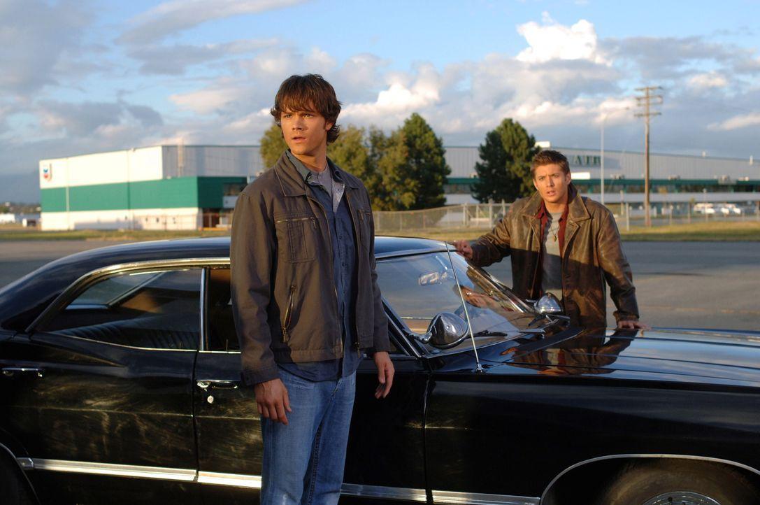 Wollen einen mysteriösen Flugzeugabsturz aufklären: Sam (Jared Padalecki, l.) und Dean (Jensen Ackles, r.) ... - Bildquelle: Warner Bros. Television