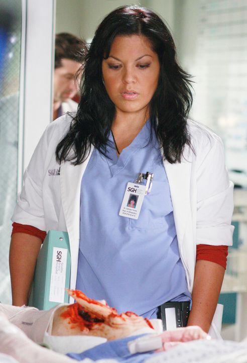 Callie (Sara Ramirez) weicht den Fragen über den Verbleib von Dr. Hahn aus, sie konzentriert sich jetzt wieder voll und ganz auf die Arbeit ... - Bildquelle: Touchstone Television