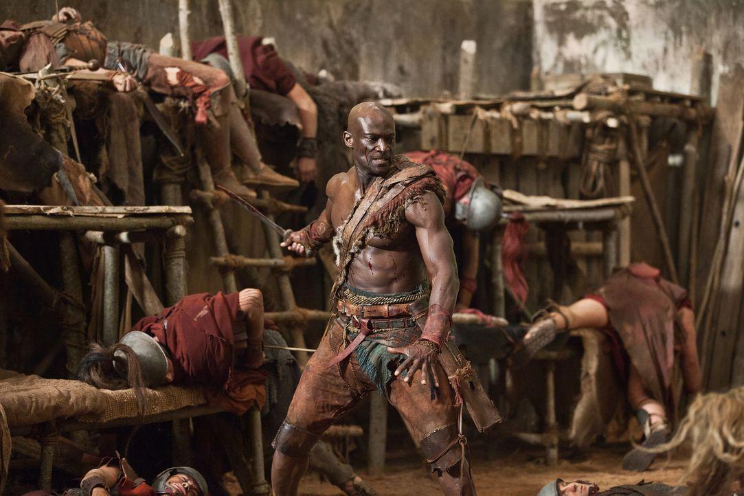 """Als sich """"Der Ägypter"""" Drago (Peter Mensah) als nächstes Opfer aussucht, beginnt ein gnadenloser Kampf auf Leben und Tod ... - Bildquelle: 2011 Starz Entertainment, LLC. All rights reserved."""