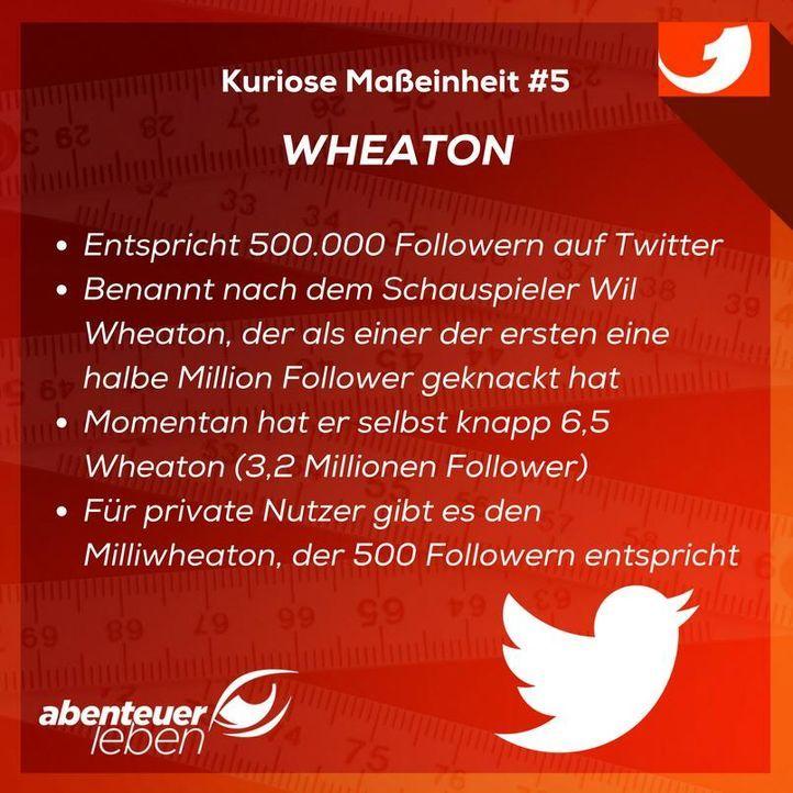 Wheaton - Bildquelle: kabel eins