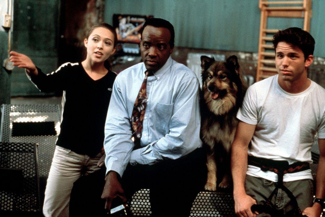 Catherine (Holly Towne), Geheimagent John Jackson (Sammy Corvey) und Andrew (Pete Jefferson) hecken einen Plan aus ... - Bildquelle: Kushner-Locke Company