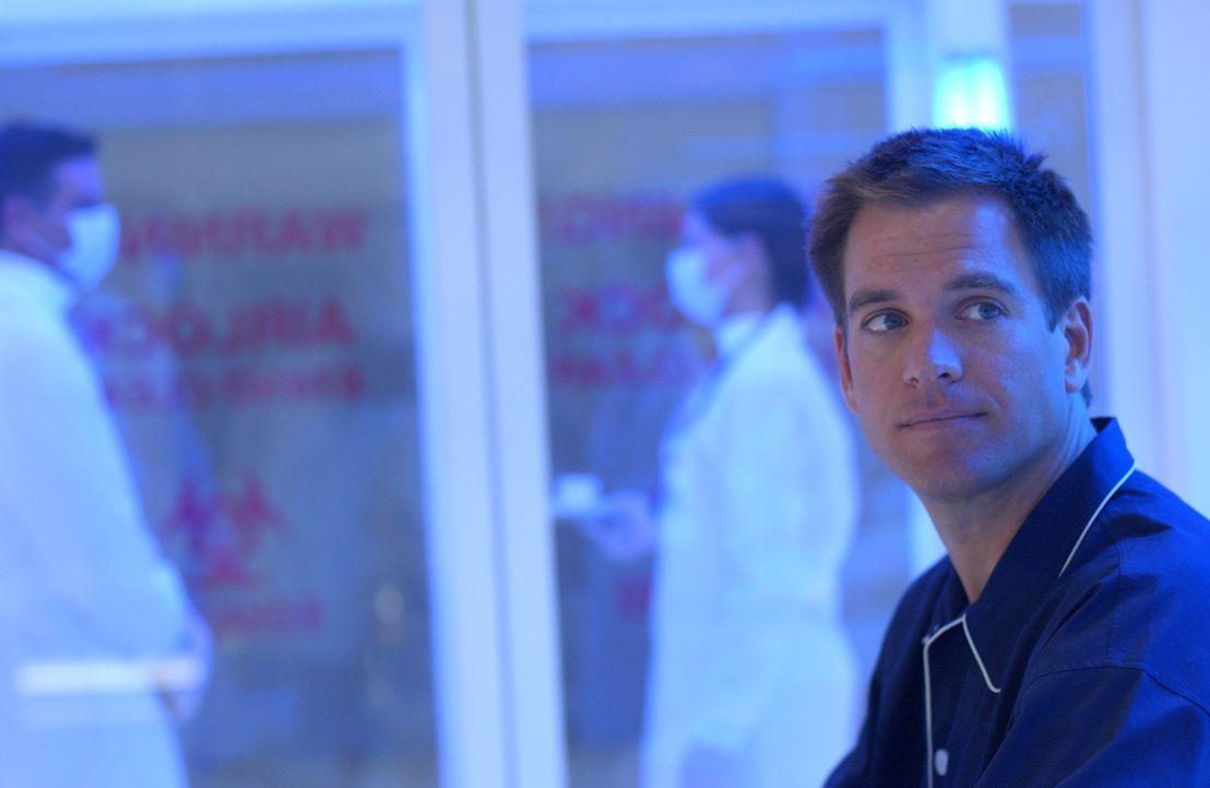 Ein mit Lippenstiftabdruck versiegelter Brief lässt Tony (Michael Weatherly) vorschnell glauben, es sei ein Gruß von einer seiner Angebeteten. Beim... - Bildquelle: CBS Television