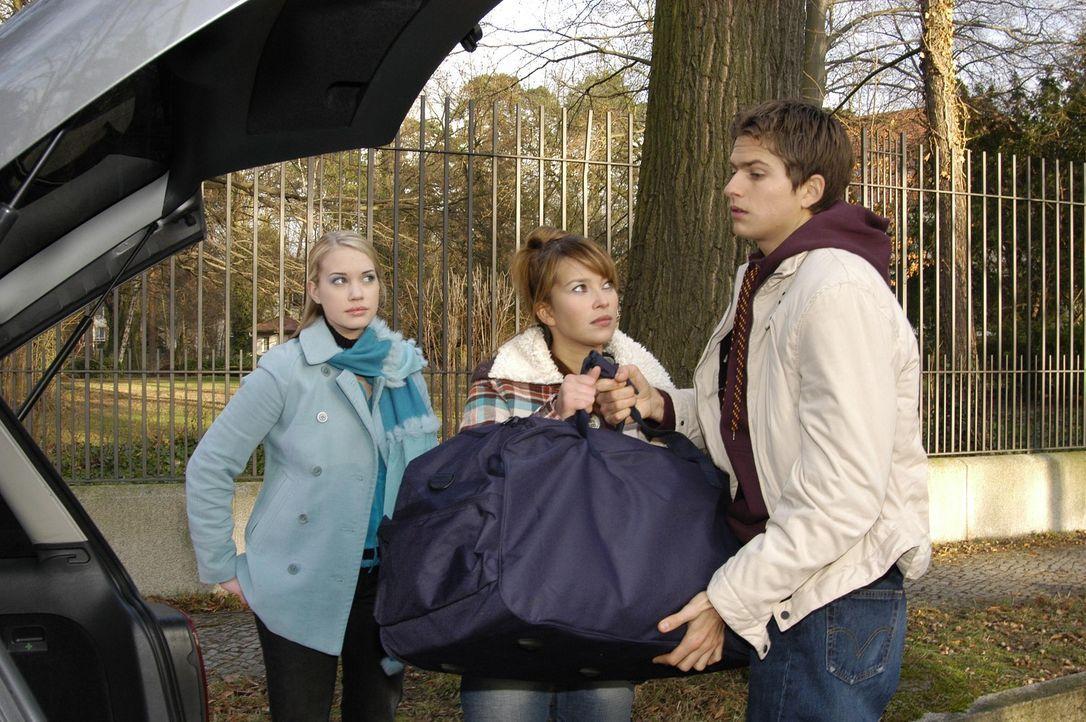 Hannah (Laura Osswald, M.) und Timo (Matthias Dietrich, r.) geraten wegen Kim Seidel (Lara-Isabelle Rentinck, l.) in Streit ... - Bildquelle: Sat.1
