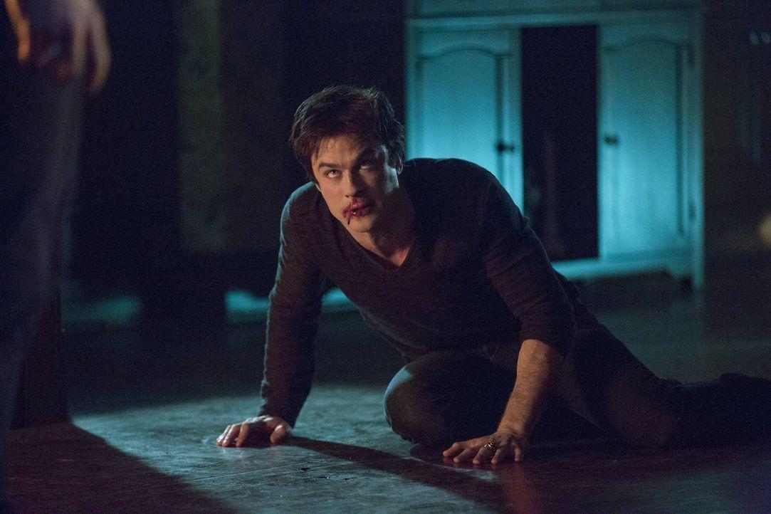 Nicht nur, dass Damon (Ian Somerhalder) seinen Blutdurst nicht unter Kontrolle hat, er muss sich auch vor den Helfern von Dr. Wes in Sicherheit brin... - Bildquelle: Warner Brothers