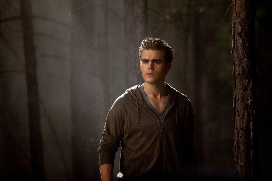 Stefan (Paul Wesley) kann seinen Augen kaum trauen: Vampire sind nicht die einzigen Kreaturen mit übermenschlichen Fähigkeiten die in Mystic Falls... - Bildquelle: Warner Brothers