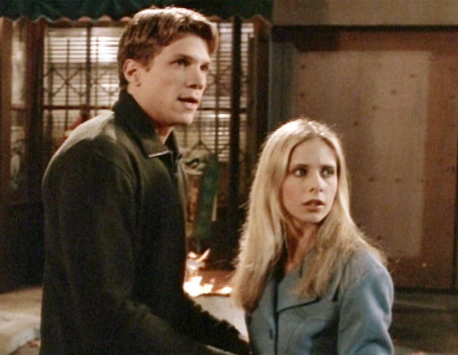 Buffy (Sarah Michelle Gellar, r.) und Riley (Marc Blucas, r.) machen sich auf den Weg, die Monster zu bekämpfen ... - Bildquelle: TM +   2000 Twentieth Century Fox Film Corporation. All Rights Reserved.