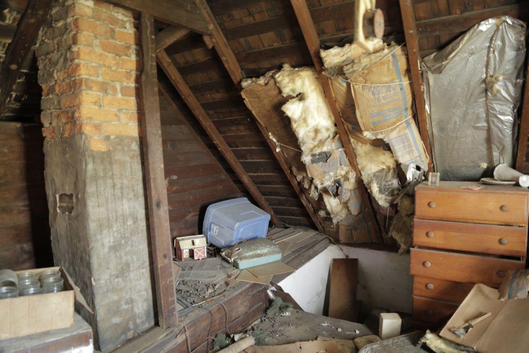 Für lediglich 5.000 Dollar erstehen Mina und Karen ihr bisher kleinstes Haus, doch damit auch große Probleme, wie die Löcher im Dach und dem alternd... - Bildquelle: 2017,HGTV/Scripps Networks, LLC. All Rights Reserved