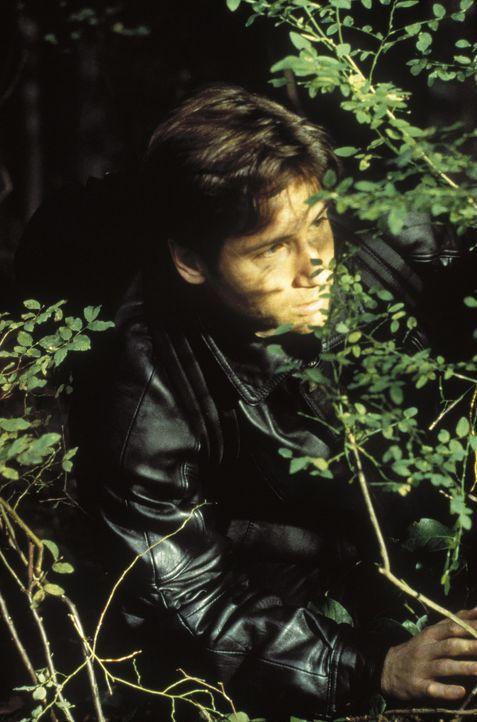 Fox Mulder (David Duchovny) stößt bei seiner Suche nach der Absturzstelle eines Ufos auf elektronische Absperrungen, die vom Militär errichtet wu... - Bildquelle: TM +   Twentieth Century Fox Film Corporation. All Rights Reserved.