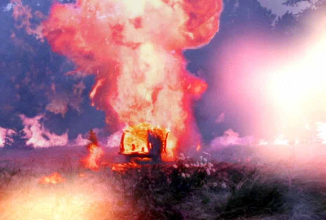 Ein Waldbrand mit gravierenden Folgen ... - Bildquelle: New Concorde