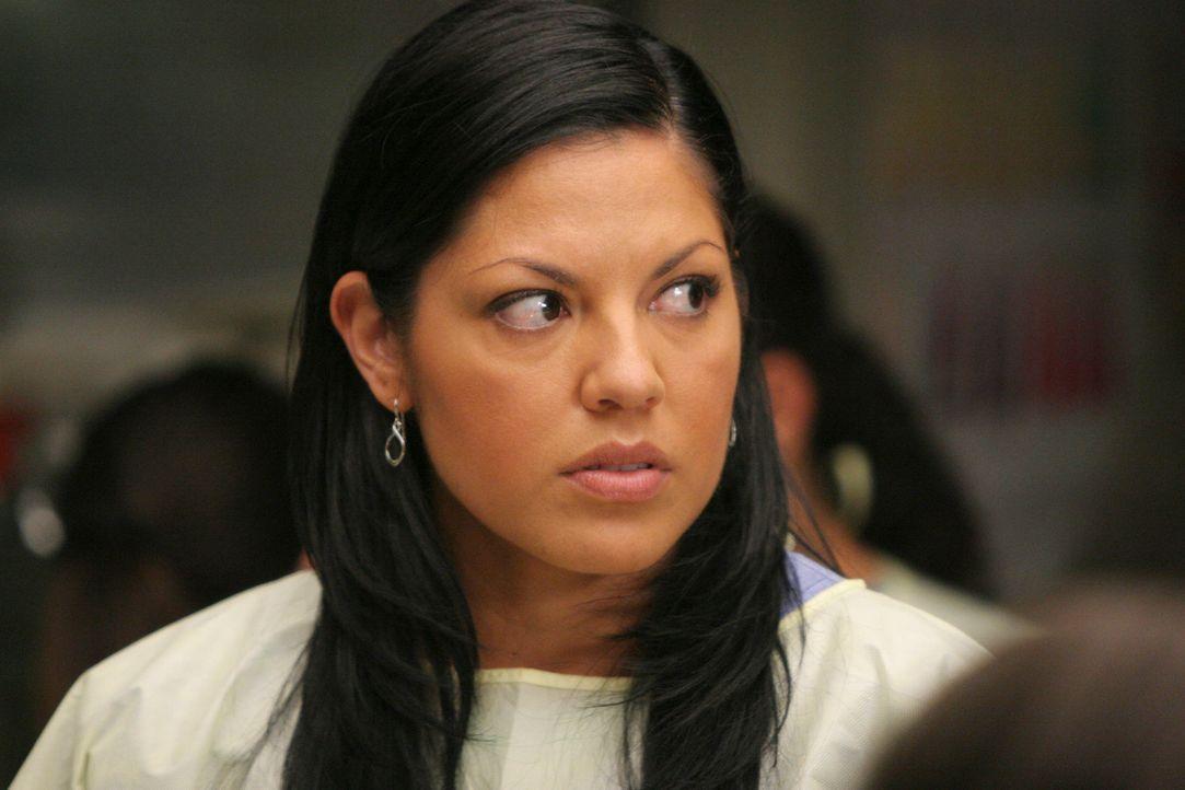 Ihre Gefühle spielen verrückt: Callie (Sara Ramirez) ... - Bildquelle: Touchstone Television