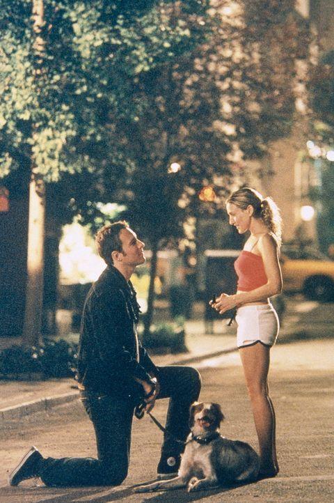 Aidan (John Corbett, l.) kniet vor Carrie (Sarah Jessica Parker, r.) nieder: Er hält um ihre Hand an. - Bildquelle: Paramount Pictures