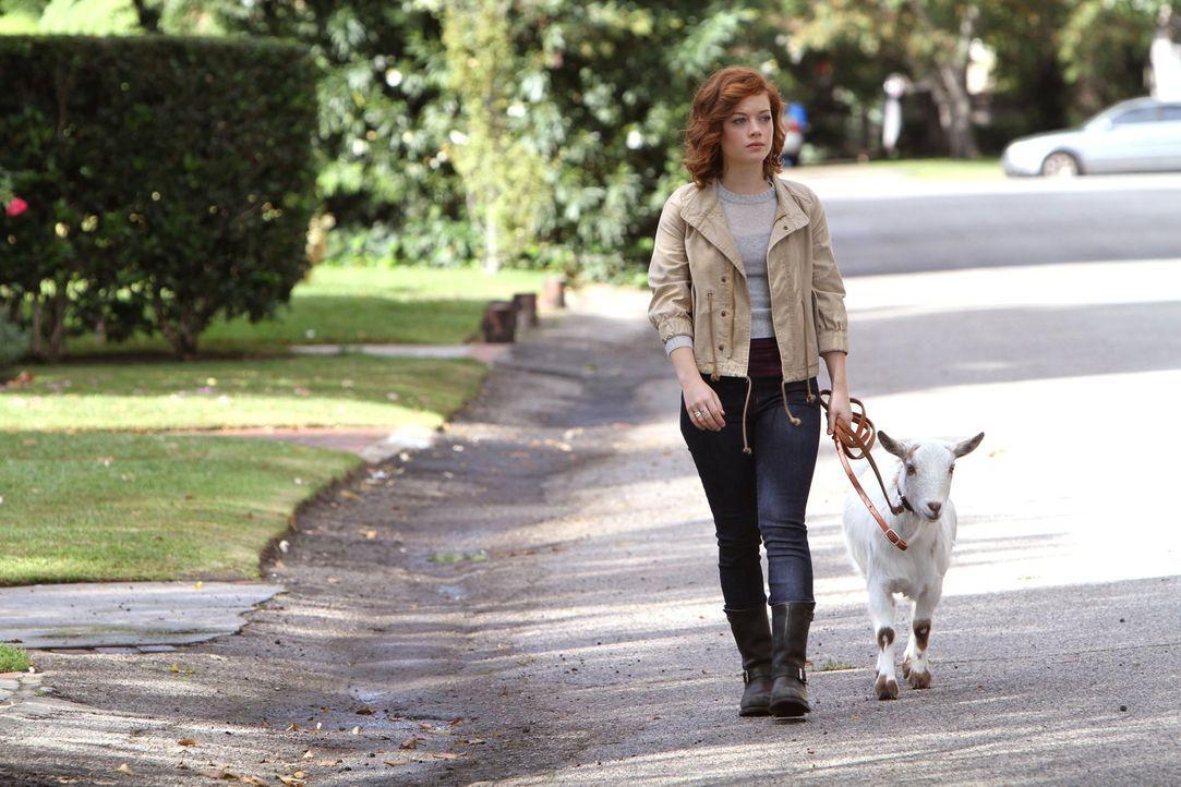 Was hat Tessa (Jane Levy) nur mit der Ziege vor? - Bildquelle: Warner Brothers