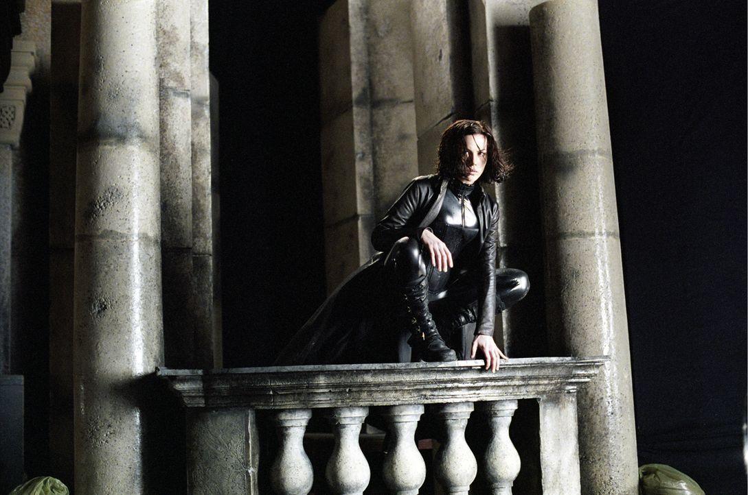 Seit Urzeiten ist die aristokratisch-elitäre Gesellschaft der Vampire mit den Werwölfen, die sich in der Unterwelt der Stadt herumtreiben, bis aufs... - Bildquelle: 2003 Lakeshore Entertainment Group LLC. All Rights Reserved.