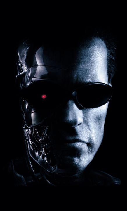 Kann als einziger die Welt vor dem Untergang retten: T-800 (Arnold Schwarzenegger) ... - Bildquelle: 2004 Sony Pictures Television International. All Rights Reserved.
