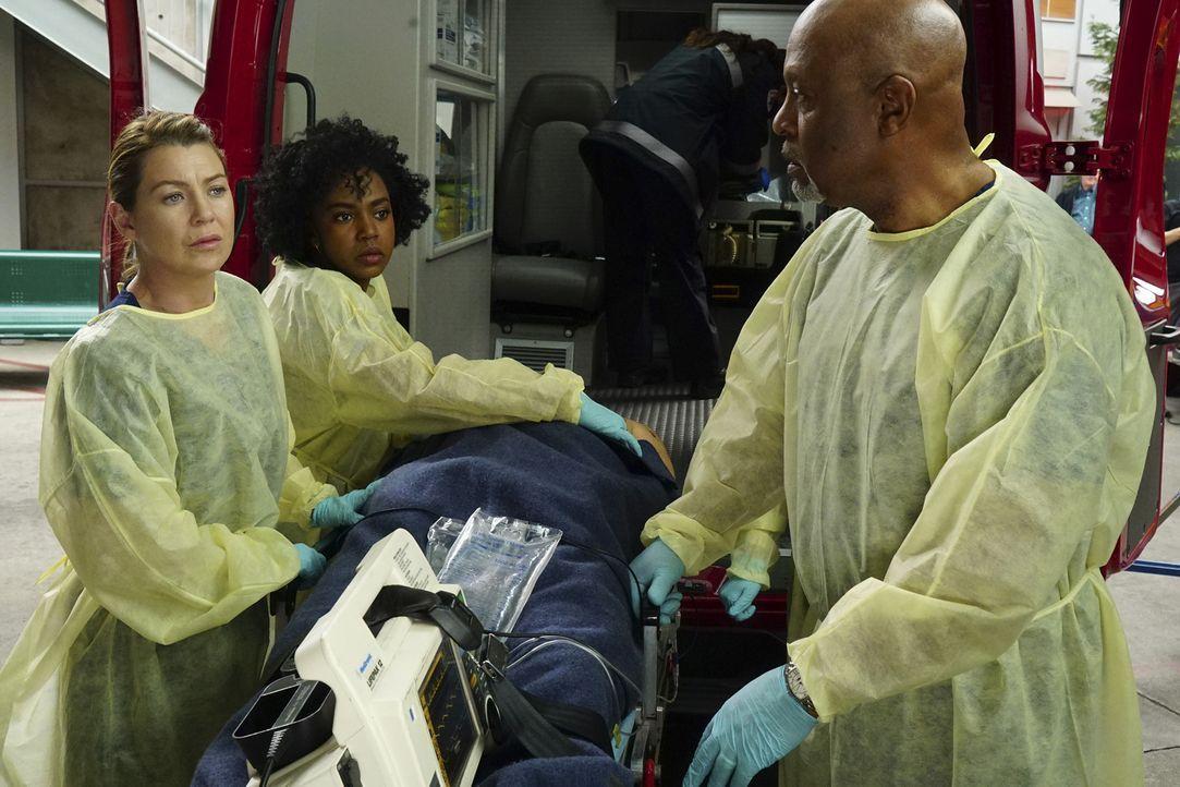 Nach einem Auffahrunfall wird eine Familie ins Krankenhaus eingeliefert. Meredith (Ellen Pompeo, l.), Webber (James Pickens Jr., r.) und Stephanie (... - Bildquelle: Richard Cartwright ABC Studios