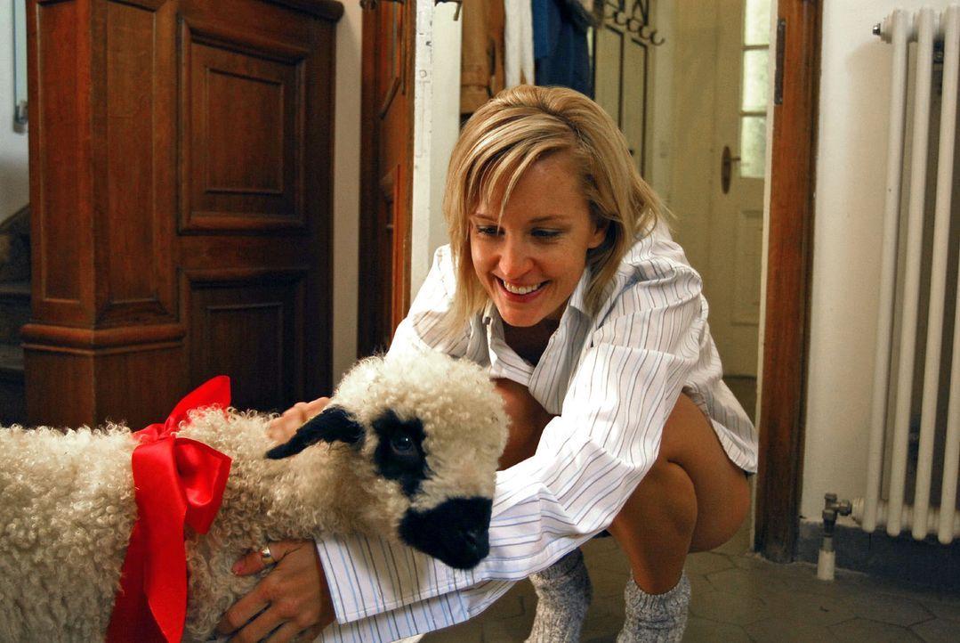 """Der Landwirt Willi Hinterseer versucht mit """"tierischen"""" Geschenken Rebeccas (Lilian Klebow) Herz zu erobern. - Bildquelle: Hans Seidenabel Sat.1"""