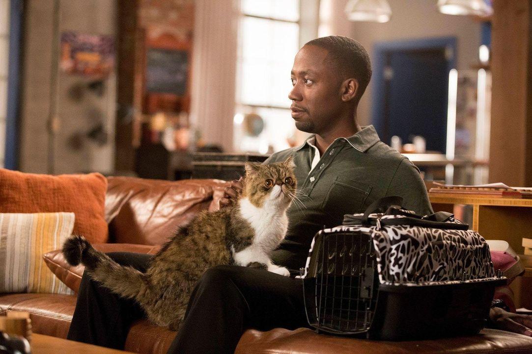 Als ob Daisys Fremdgehen nicht genug wäre, jetzt hat Winston (Lamorne Morris) auch noch deren Katze am Hals ... - Bildquelle: TM &   2013 Fox and its related entities. All rights reserved.