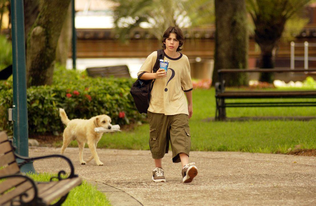 Verspottet von seinen Mitschülern wandert Zach Dylan (Sammy Kahn) traurig durch den Park, als ihm ein Hund begegnet, der aussieht, als könne auch... - Bildquelle: North by Northwest Entertainment