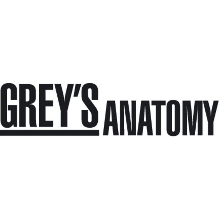 GREY'S ANATOMY - Logo ... - Bildquelle: Touchstone Television