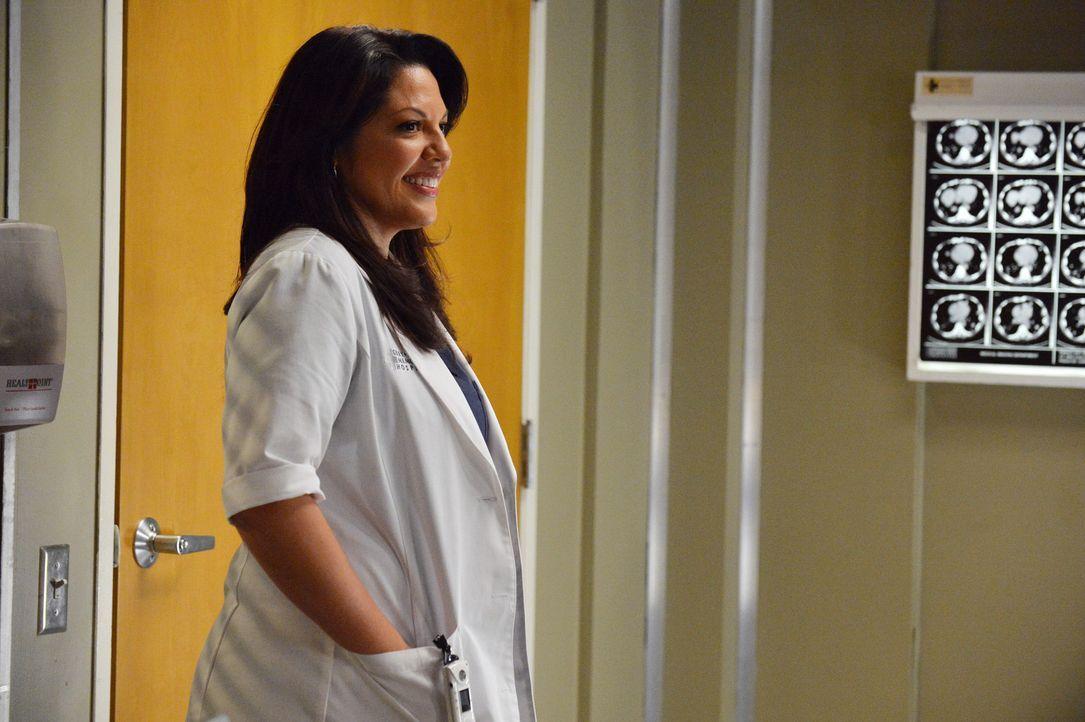 Callie (Sara Ramirez) hofft, dass ihr Sexleben mit Arizona wieder in Schwung kommt ... - Bildquelle: ABC Studios
