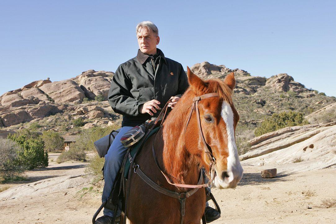Als Abby herausfindet, dass die  Farben auf dem Gemälde von Patterson radioaktiv sind,  fliegen Gibbs (Mark Harmon) und Tony nach Arizona, um die Ma... - Bildquelle: CBS Television