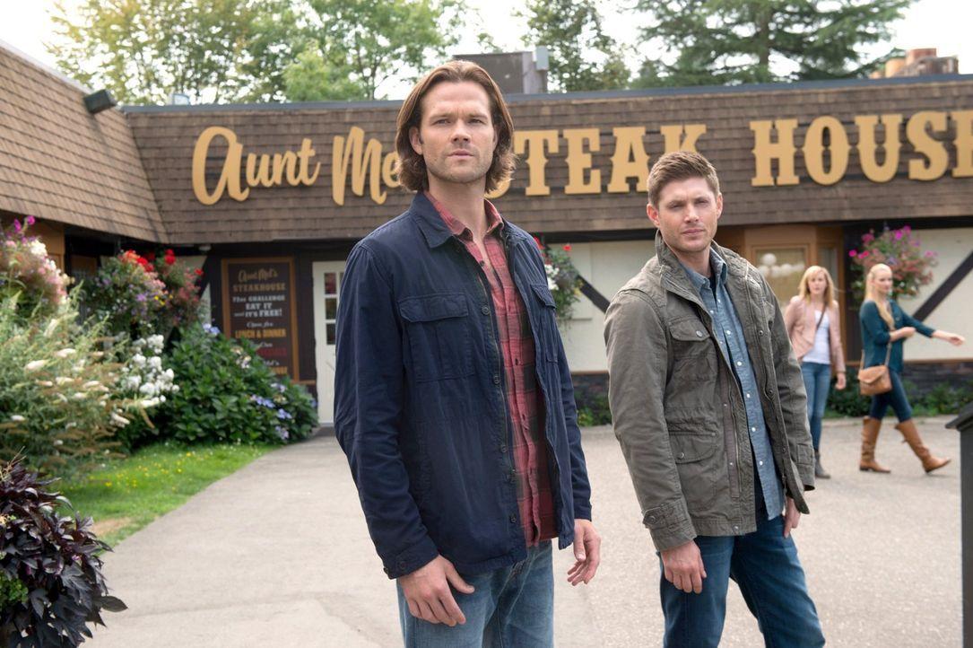 Eigentlich wollen Sam (Jared Padalecki, l.) und Dean (Jensen Ackles, r.) endlich mal wieder einen Fall lösen, doch auf dem Weg dorthin, beginnen sie... - Bildquelle: 2014 Warner Brothers
