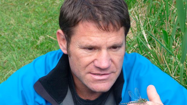 Steve Backshall stellt das verblüffende Doppelleben der Libelle vor ...