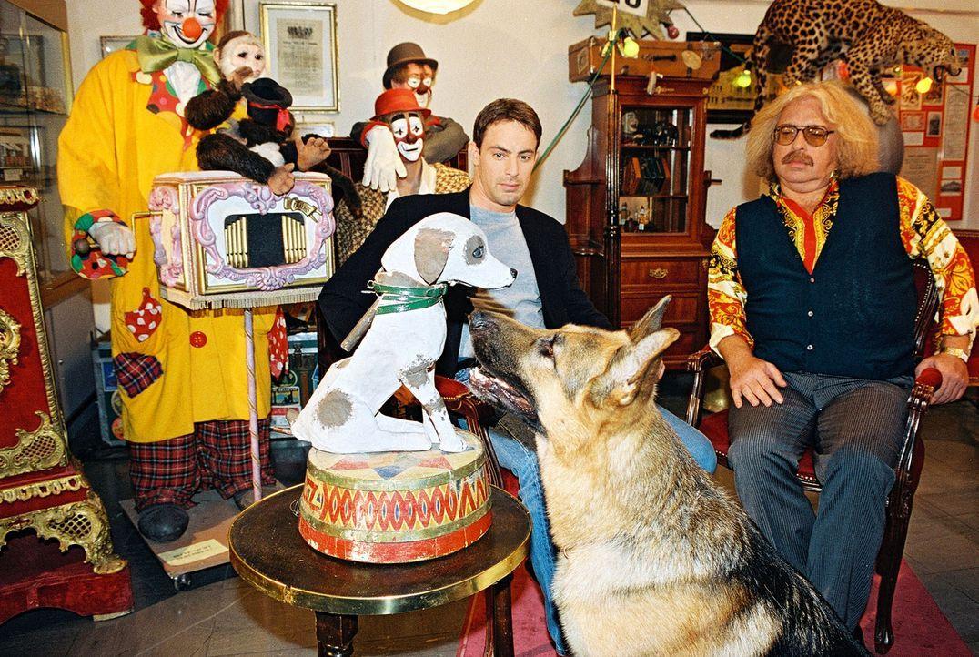 Rex und Kommissar Brandtner (Gedeon Burkhard, l.) ermitteln bei einem Zirkus-Freak (Bernhard Paul, r.). Rex interessiert sich für die Hunde-Büste... - Bildquelle: Sat.1